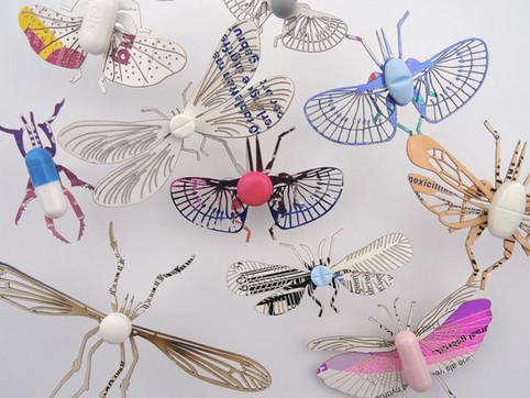insecta - pharma >