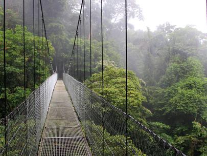 Be a Bridge