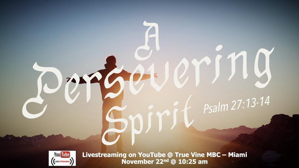 A Persevering Spirit - Psalm 27:13-14 13-14 (e