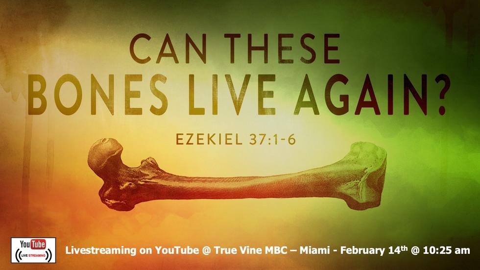Can These Bones Live Again? - Ezekiel 37:1-6