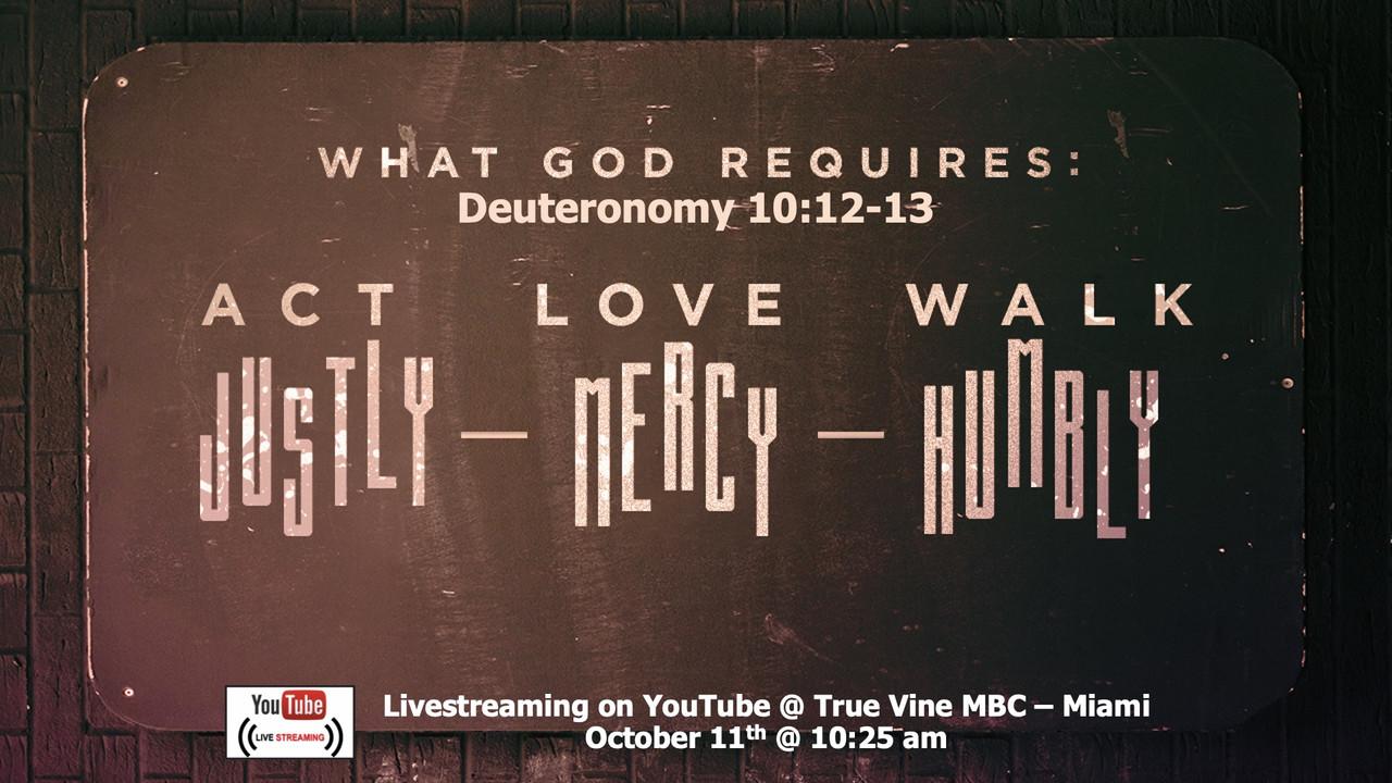 What God Requires - Deuteronomy 10:12-13