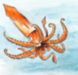 The_Kraken_Illustration_M_Roth.jpg