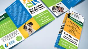 The Animal Playhouse - Brochure Design