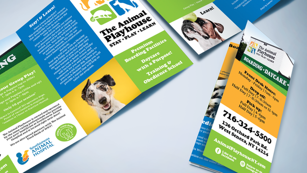 The Animal Playhouse - Brochure Design