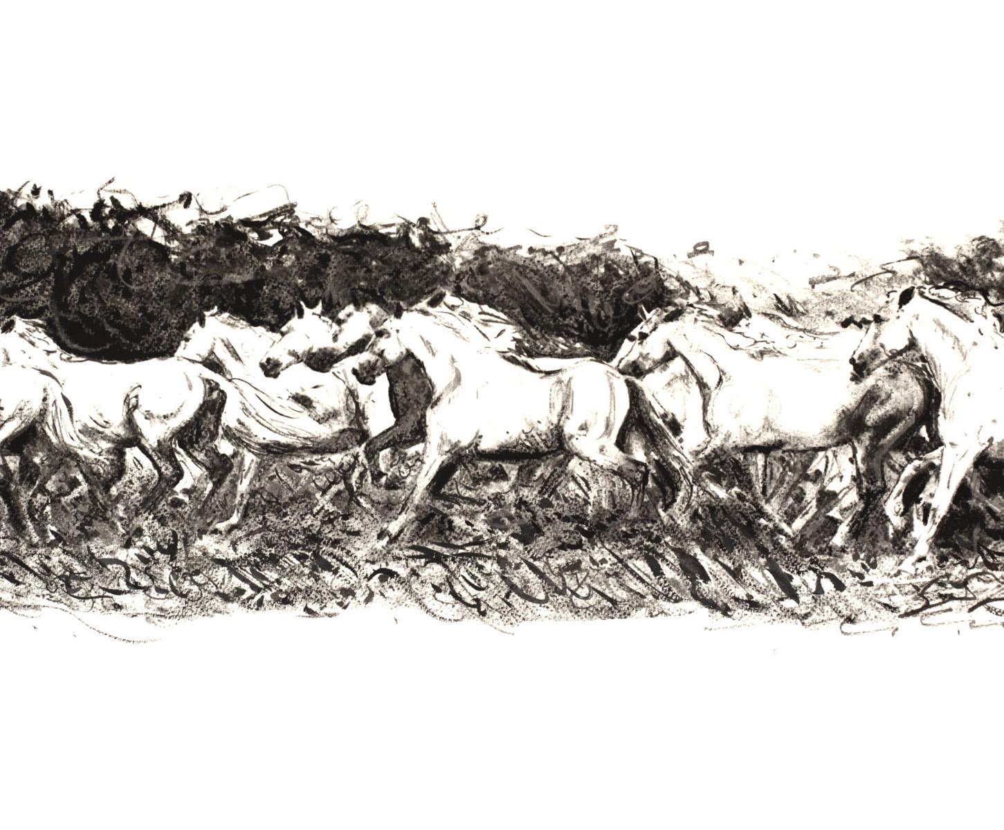 Horses Drawing