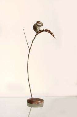 Bronze Harvest Mouse