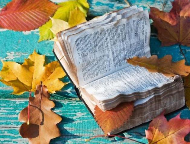 Fall with bible.JPG