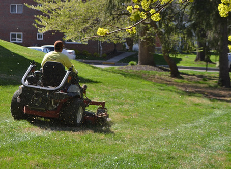 10 Tips for summer mowing