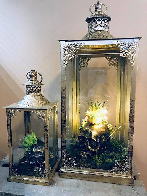Moss Gods Lantern Set