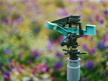 5 Questions to ask your landscaper about Irrigation