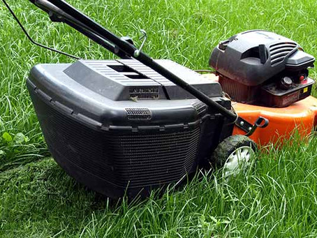 Maryland Summer Lawn Care Do's & Don'ts