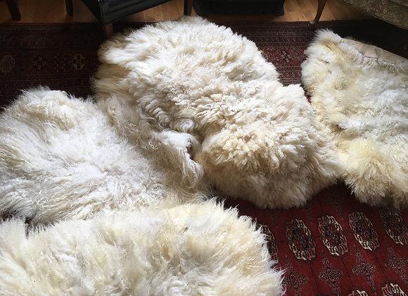 Sheep skin large
