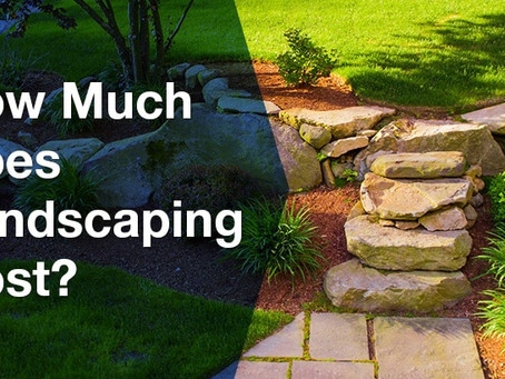 Landscaping cost savings from the Pros