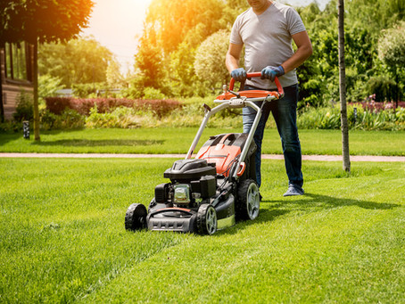 What time of day to mow?
