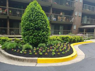 Apartment-complex-plantings-2-e157262105