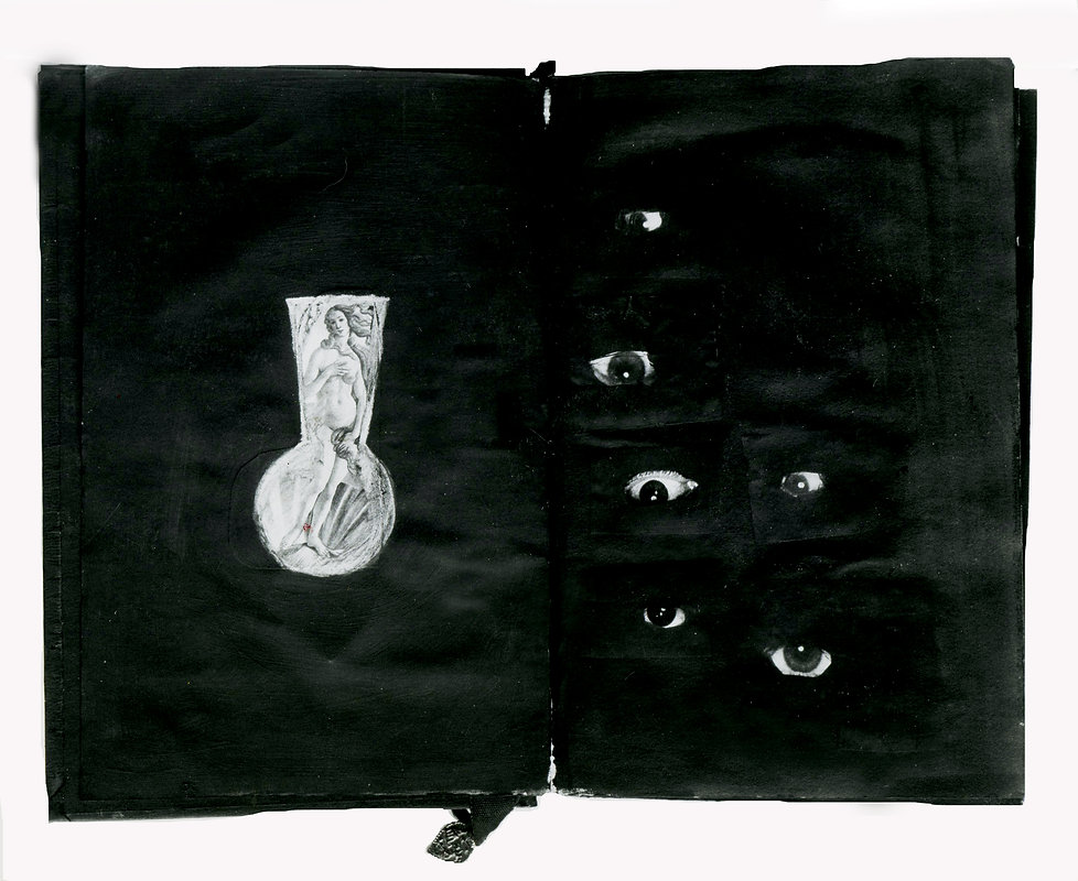 DIARIO- Libro intervenido-collage y tint