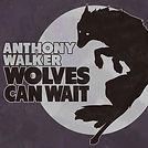 Wolves Cover Art FINAL.jpg