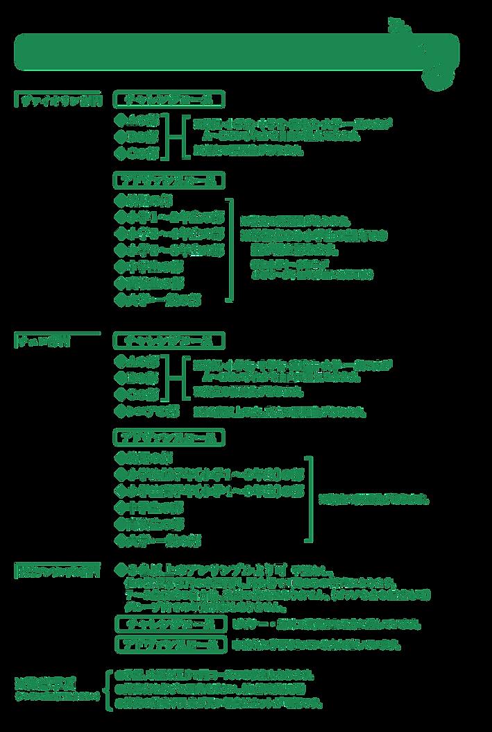 verde2020-11_02.png