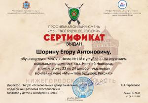 сертификат шорин.png