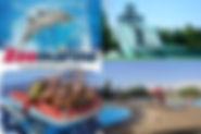 zoomarine3.jpg