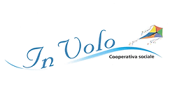 logo in volo.png