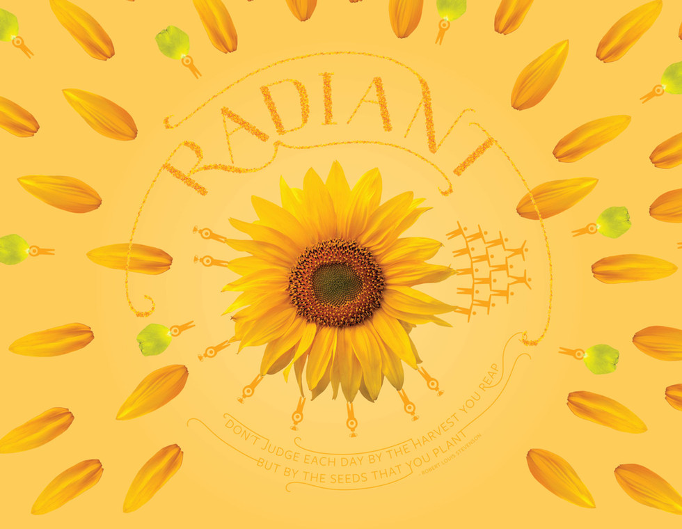 YELLOW signifies radiance represented by a sunflower. The sunflower signifies the connection between an inspiration and a person inspired. The radiant glow and form of the sunflower is a source of instant joy.