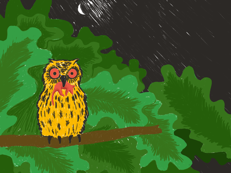 All the Creatures of the Jungle tell a Story for the Big Little Book Award