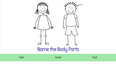 Level 1 Body parts.png