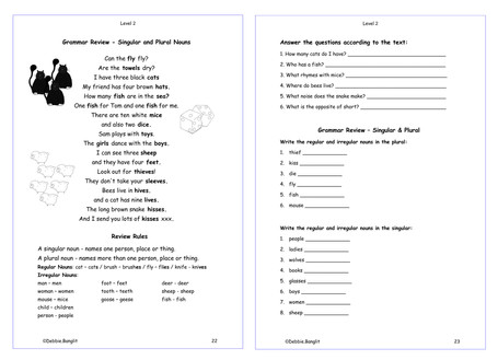 Level 2 pages 22 & 23  - A poem to teach and review the singular and plural nouns.