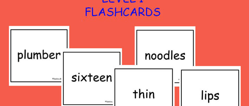 Level 1 Word Flashcards - Set of 315 - 6cm x 6cm