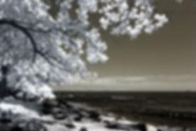 amazing-beach-bedrock-922619.jpg