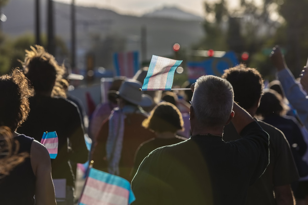 Marchers waving Trans Support flags at a visibility rally