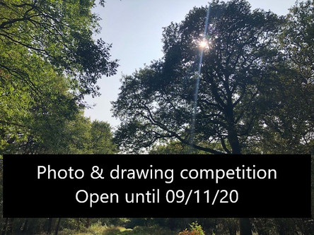 Celebrate our countryside - with two community competitions.