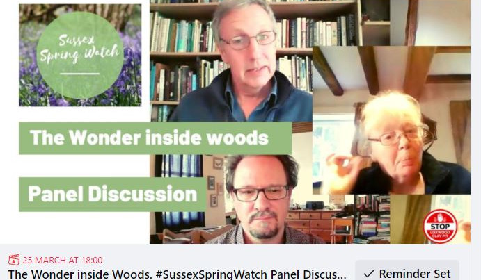 The wonder inside our woods, expert panel and community Q&A