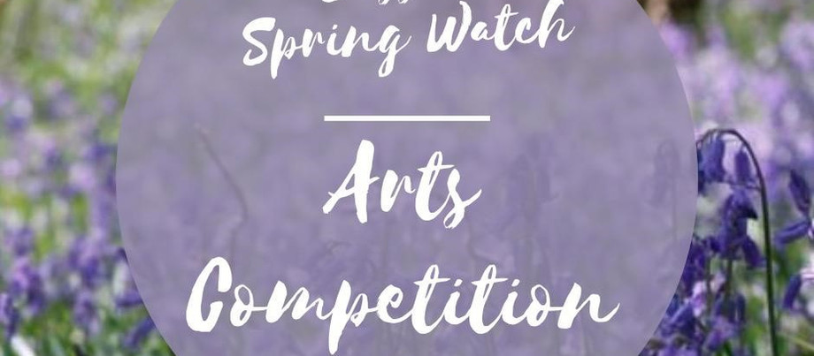 Arts Competition – Spring in the Woods
