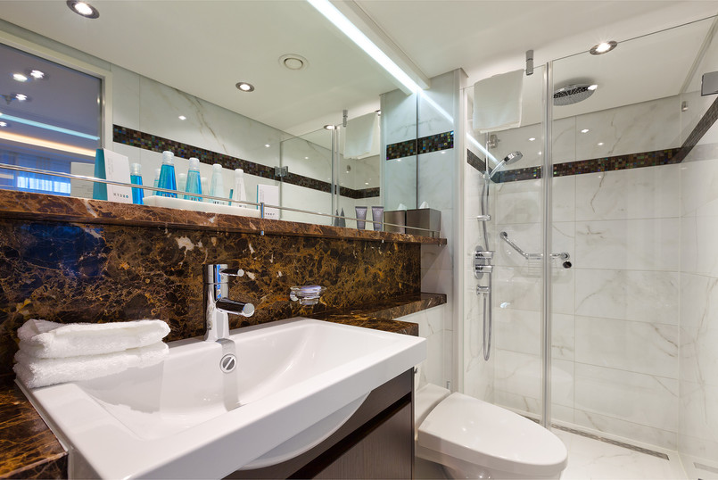 Stateroom Category AA Bathroom