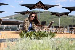 Sun Deck Herb Garden