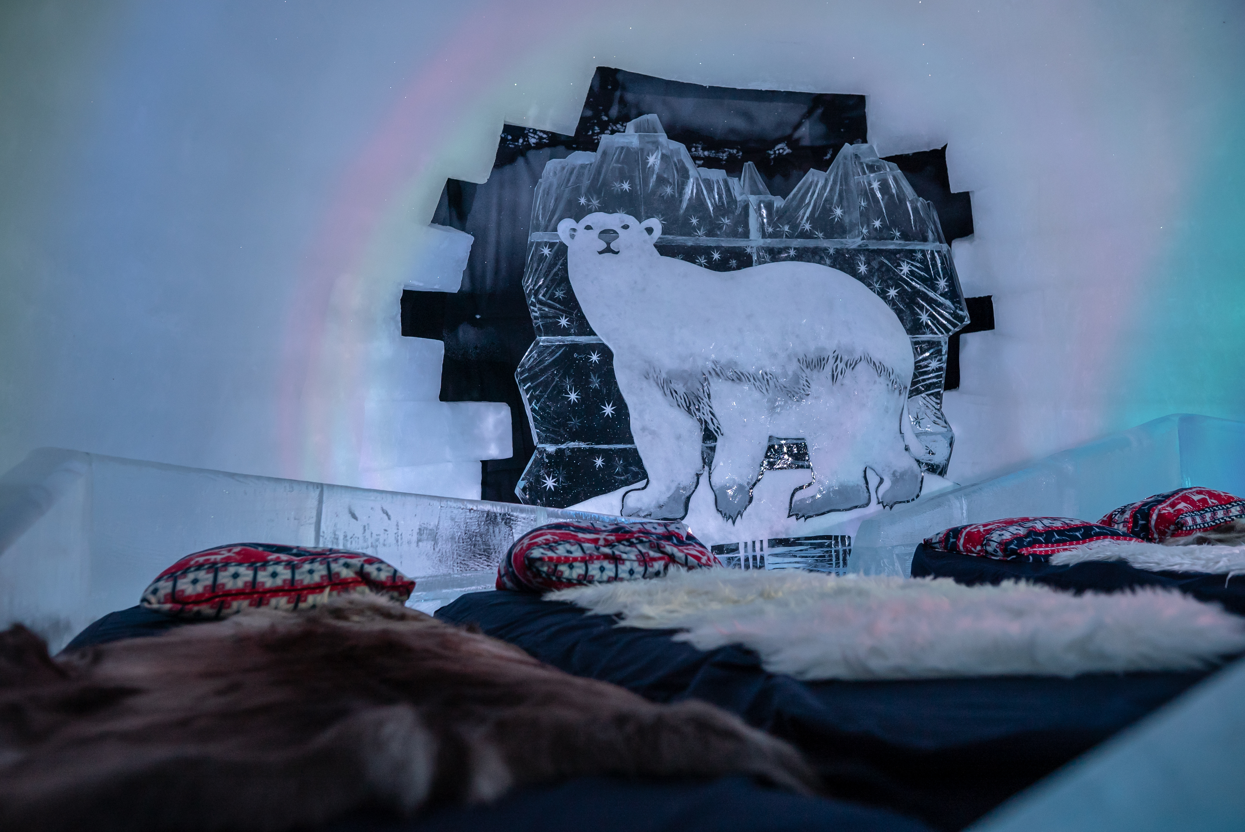 Polar bear room