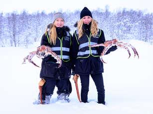 King Crab Winter Safari