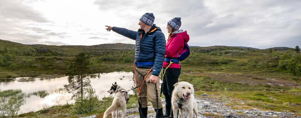 Husky Mountain Hike Kirkenes
