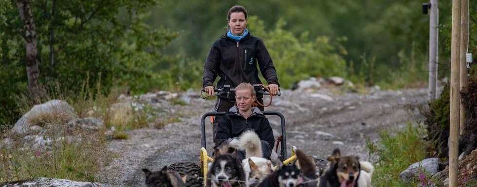 Husky wagon Kirkenes
