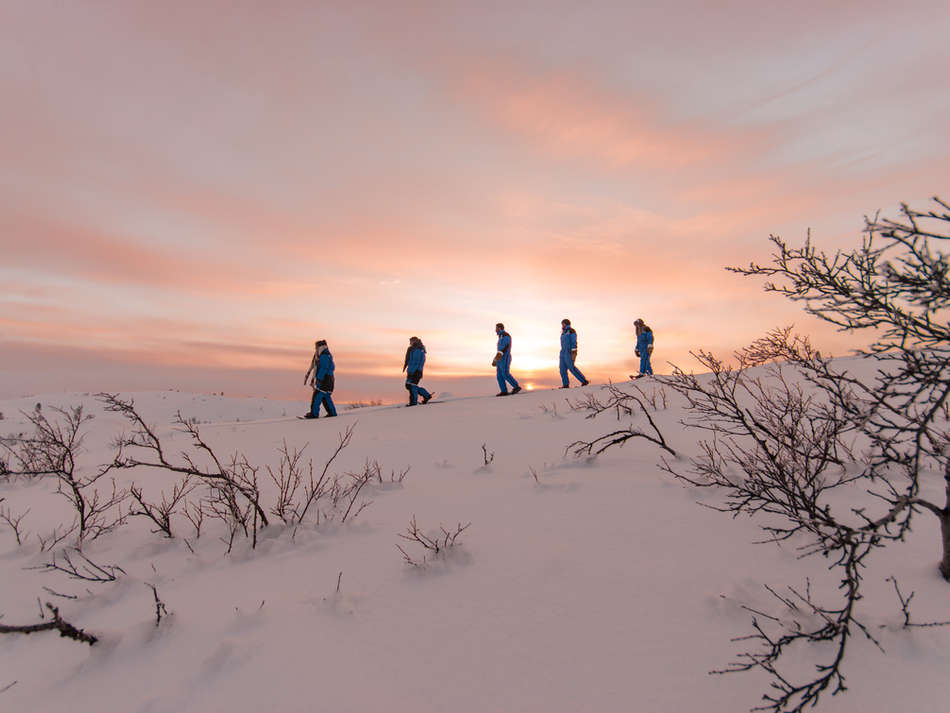 Snowshoe Walking
