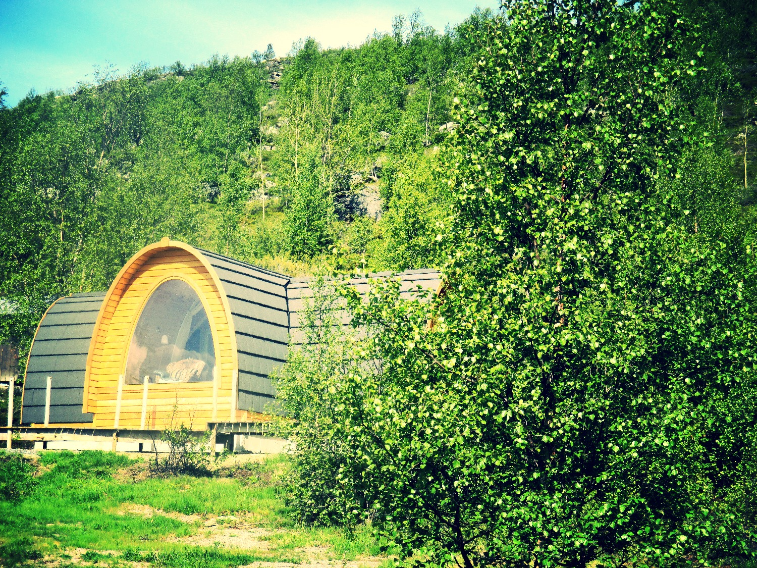 Cabins in summer time