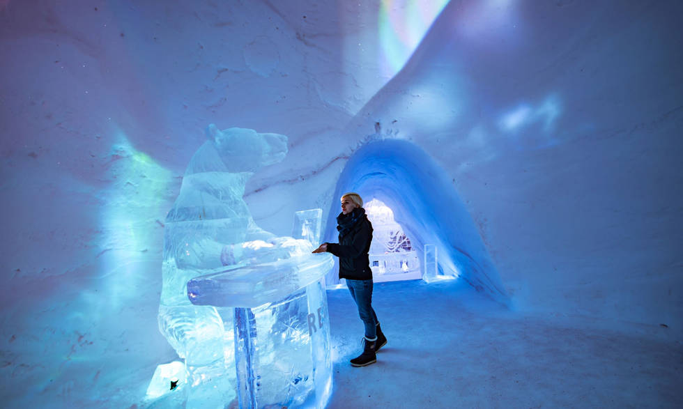 Ice Reception