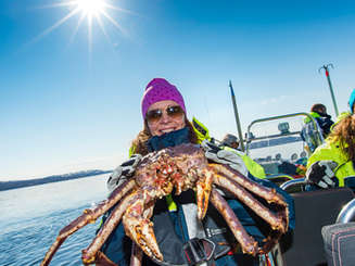 King Crab Safari by RIB