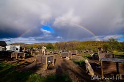 Rainbow over the dogyard