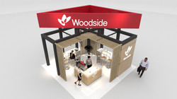 Woodside LNG19 Final design