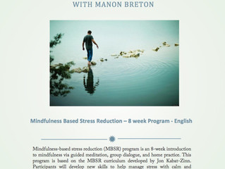 Mindfulness 8 week Program on line