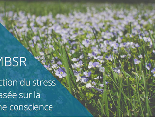 Cours Mindfulness 8 semaines