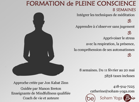 Formation Programme Mindfulness            8 semaines